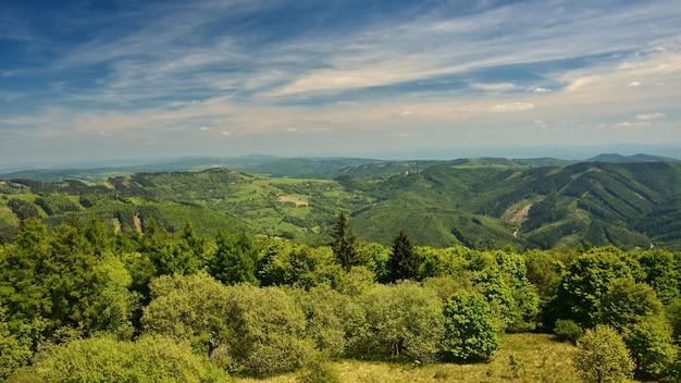 Bela paisagem nas montanhas no verão Foto gratuita