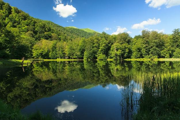 Bela paisagem verde refletindo no lago gosh, armênia Foto gratuita