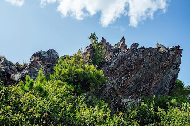 Bela pedra grande com musgos e líquenes entre uma rica vegetação sob um céu azul com grandes nuvens. fundo de natureza cênica com grande rocha afiada entre uma vegetação exuberante. pedra pontiaguda entre gramíneas vivas. Foto Premium