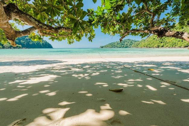 Bela praia exótica com galho de árvore para relaxamento localizado ilha surin, tailândia Foto Premium