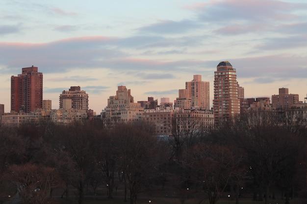 Bela vista da cidade de nova york, tirada do central park Foto gratuita
