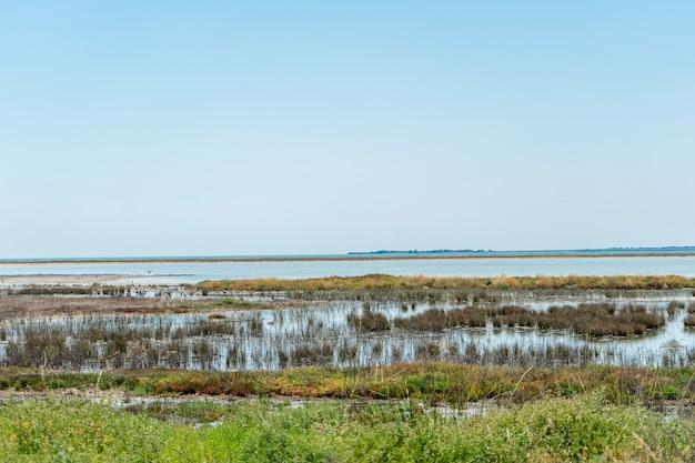 Bela vista do lago salgado sivash na ucrânia. paisagem com arbustos interessantes em primeiro plano. foto de viagem. ilustração para viagens. água e céu azul. bela natureza paisagem Foto Premium