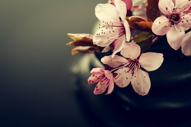 Belas flores rosa spa em spa hot stones on water wet background. composição lateral. espaço de cópia. spa concept. fundo escuro. Foto gratuita