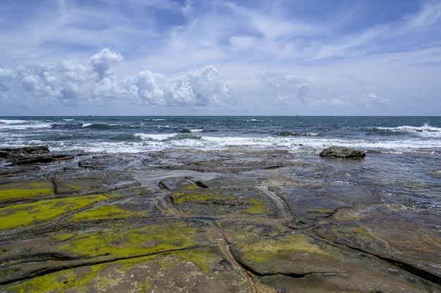 Belas paisagens da costa de shelley beach, sunshine coast, austrália Foto gratuita