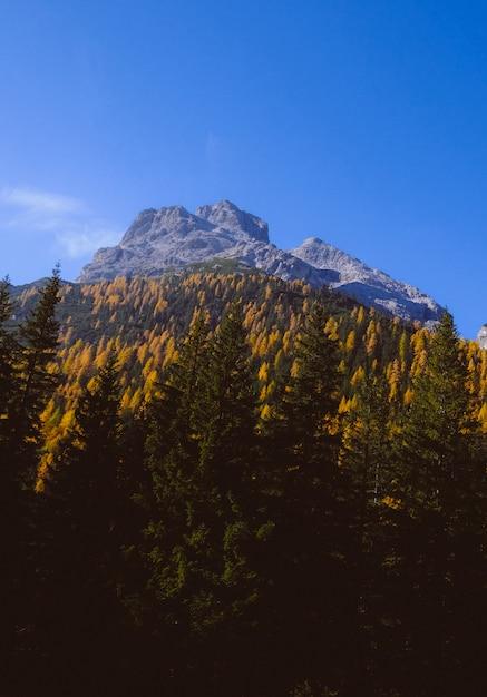 Belas paisagens de altas montanhas rochosas, rodeadas por árvores verdes Foto gratuita