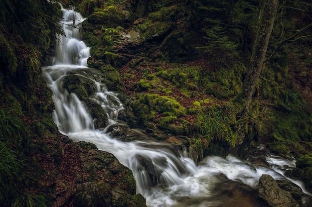 Belas paisagens de uma poderosa cachoeira em uma floresta perto de formações rochosas cobertas de musgo Foto gratuita