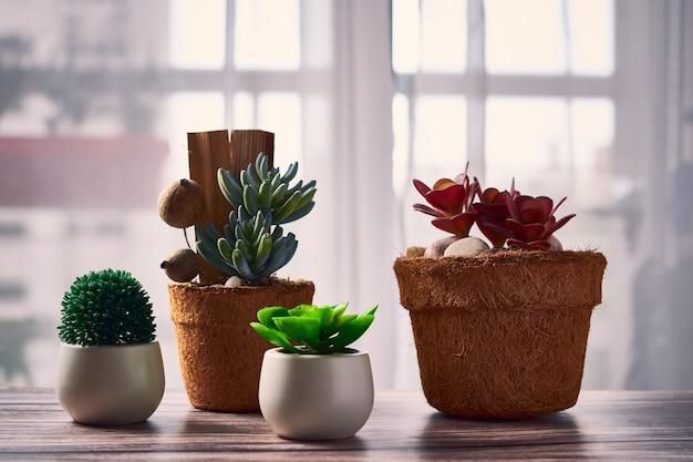 Belas plantas de casa em vasos de flores sobre a mesa Foto gratuita