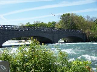 Beleza do rio niagara Foto gratuita