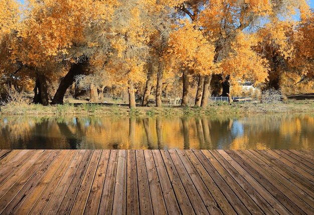 Belo céu e rio com o chão Foto gratuita