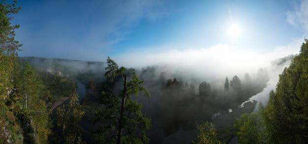 Belo panorama de uma manhã ensolarada no parque nacional de córregos de veados Foto Premium