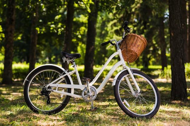 Bicicleta branca no chão da floresta Foto gratuita