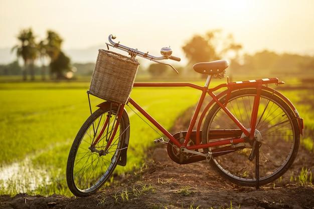 Bicicleta clássica de estilo vermelho japão no campo verde Foto Premium