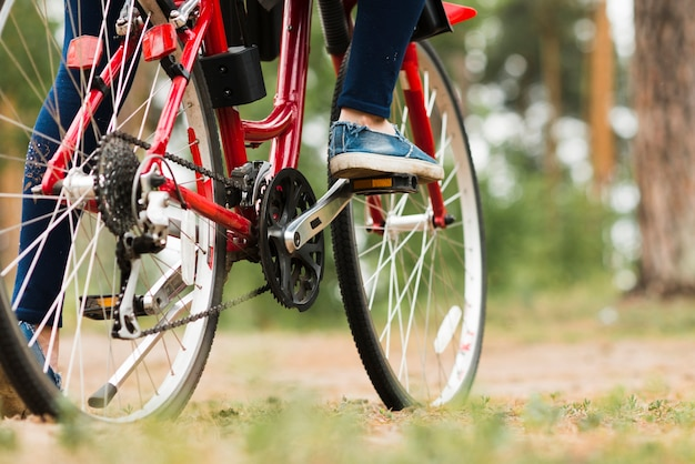 Bicicleta de vista inferior na estrada florestal Foto gratuita