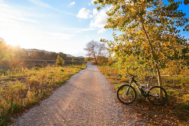 Bicicleta no parque de turia do pôr do sol do parque de valência Foto Premium