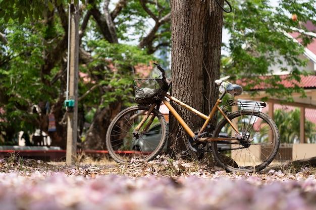 Bicicleta vintage com grande árvore Foto Premium