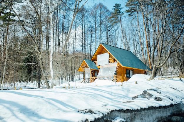 Big hut na cena de neve Foto gratuita