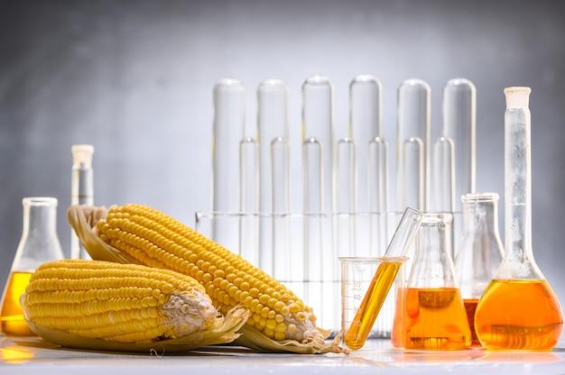 Biocombustível ou xarope de milho, gasolina, energia, ambientalista Foto Premium
