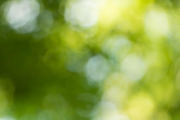 Bokeh para o fundo da natureza Foto Premium