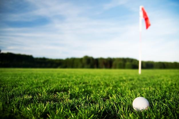 Bola de golfe em um campo de grama Foto gratuita