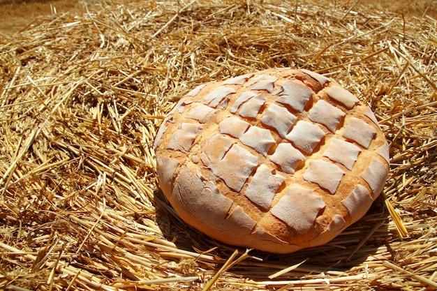 Bolo de pão redondo na palha de trigo dourado Foto Premium