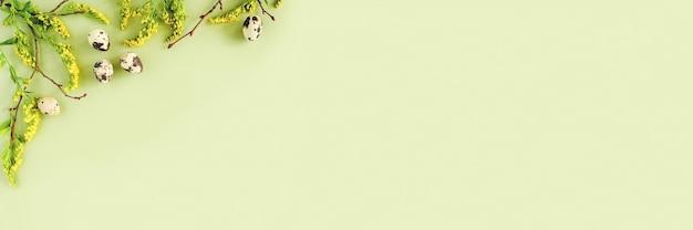 Borda floral primavera páscoa. galhos de árvores naturais, flores amarelas e ovos de codorna em fundo verde Foto Premium