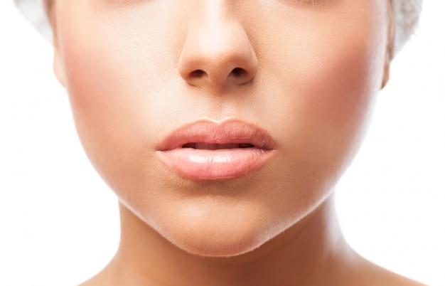 Bordos fêmeas em close-up Foto gratuita