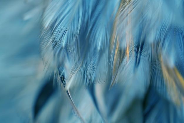 Borrão, pássaro, frangos, pena, textura, para, fundo Foto Premium