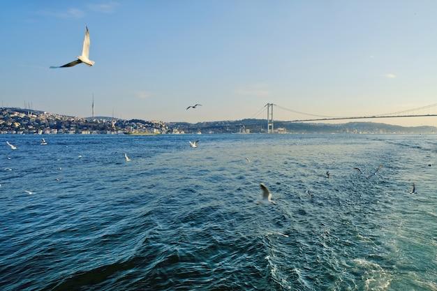 Bósforo entre a europa e a ásia menor. junto com os dardanelos conecta o mar negro com o egeu, que faz parte do mediterrâneo. Foto Premium