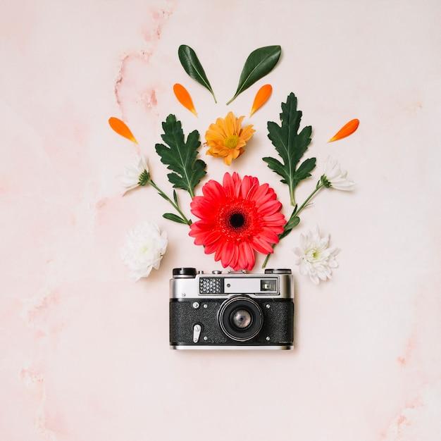 Botões de flores com a câmera na mesa Foto gratuita