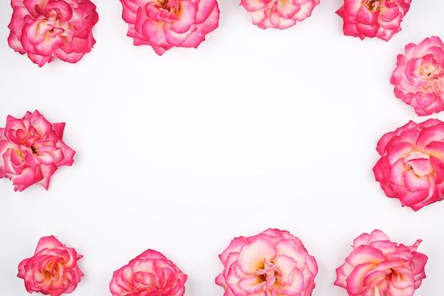Botões de florescência de fundo de rosas cor de rosa Foto Premium