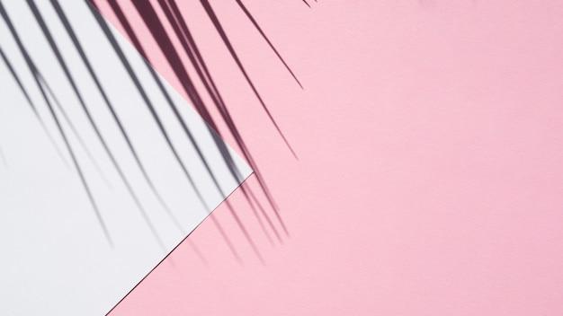 Branco azul pálido em um fundo rosa com uma sombra de folha Foto gratuita