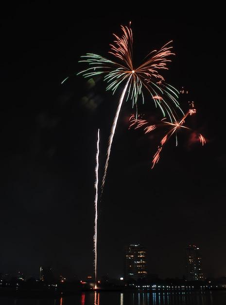 Brilhando flores desabrochando estourando fogos de artifício iluminar no céu negro Foto Premium