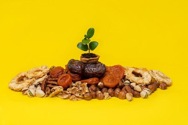 Broto verde em uma casca de noz na mistura de frutas secas e castanhas sobre um fundo amarelo. símbolos do feriado judaico de tu bishvat (b'shevat) Foto Premium