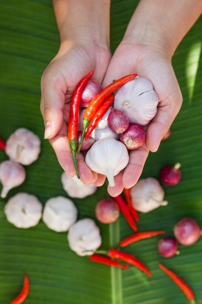 Bulbo de alho, pimentão e cebola segurando na mão, projetando-se para a frente Foto Premium