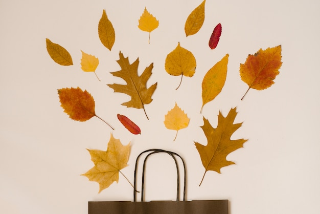 Buquê brilhante de outono caído folhas em um saco de papel marrom presente Foto Premium