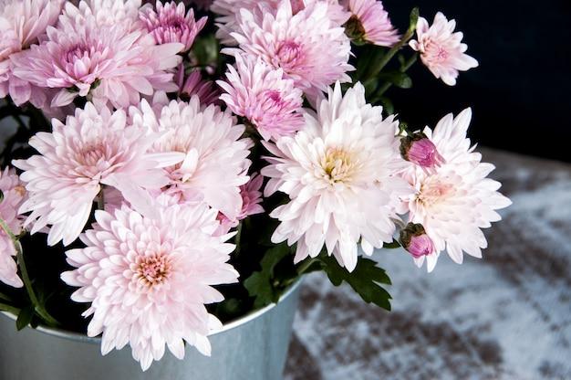 Buquê de crisântemos rosa | Foto Premium