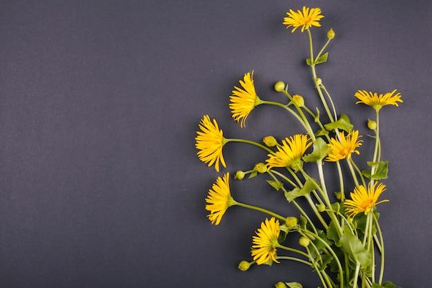 Buquê de flores da margarida Foto gratuita