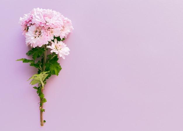 Buquê de flores em um rosa Foto Premium