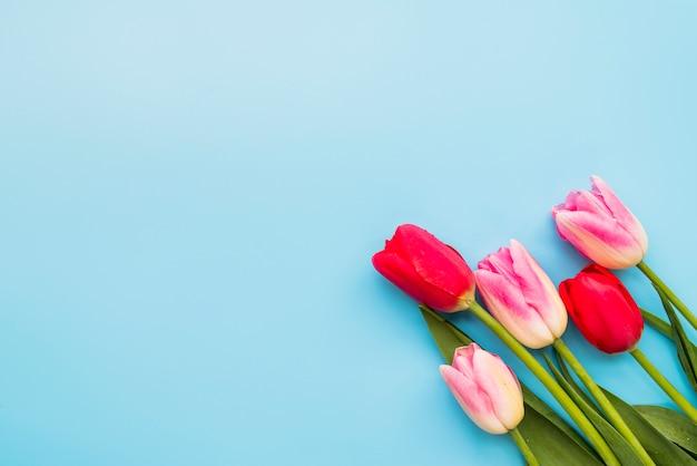 Buquê de flores frescas coloridas em hastes Foto gratuita