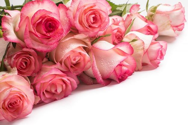 Buquê de flores rosas cor de rosa em fundo branco. Foto Premium