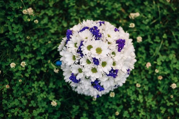 Buquê de margaridas brancas e flores azuis Foto Premium