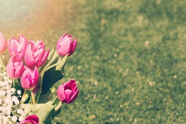Buquê de tulipas ao ar livre Foto gratuita