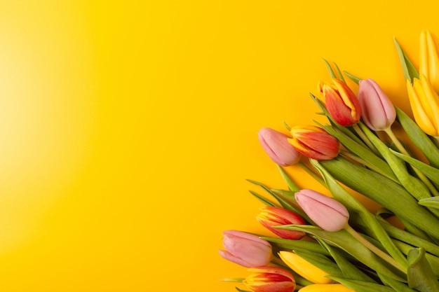 Buquê de tulipas em um fundo amarelo. vista plana leiga, superior com copyspace. Foto Premium