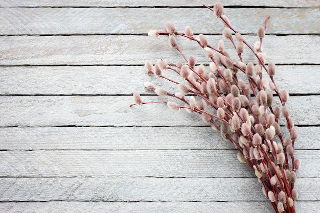 Buquê de um salgueiro em flor sobre um fundo claro de madeira Foto Premium