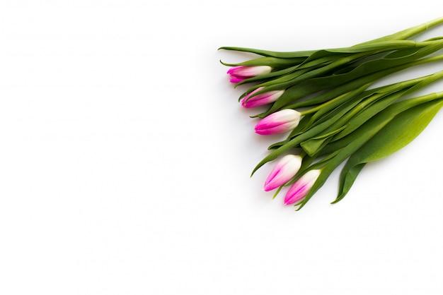 Buquê fresco de cinco tulipas Foto Premium