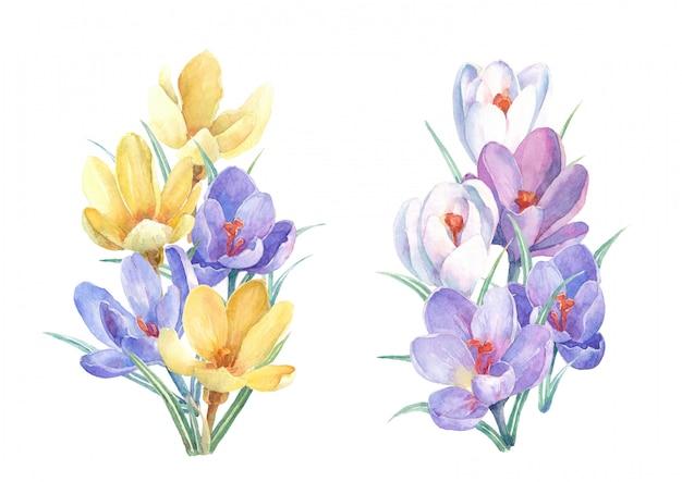 Buquês de flores em aquarela de primavera Foto Premium