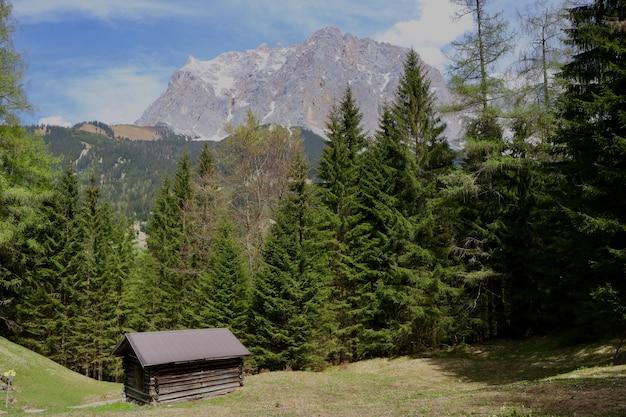 Cabana de madeira em um terreno verde cercado por belas árvores verdes e altas montanhas rochosas Foto gratuita