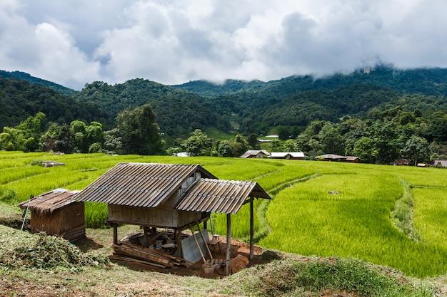 Cabana na aldeia das montanhas com campo de arroz escada Foto Premium