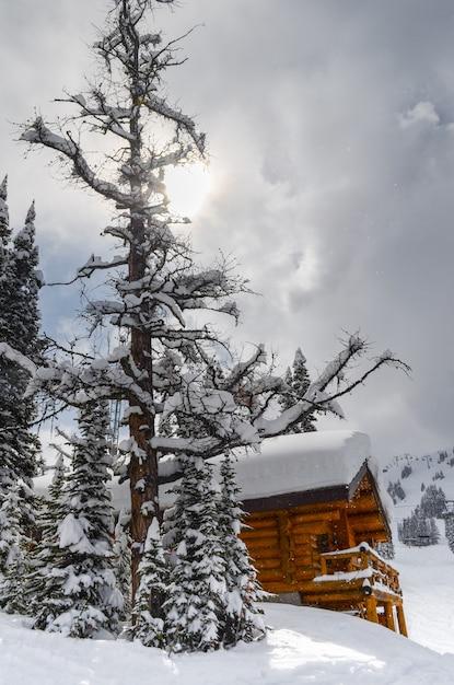 Cabine na neve cercada por evergreens nas montanhas rochosas do parque nacional de banff c Foto Premium