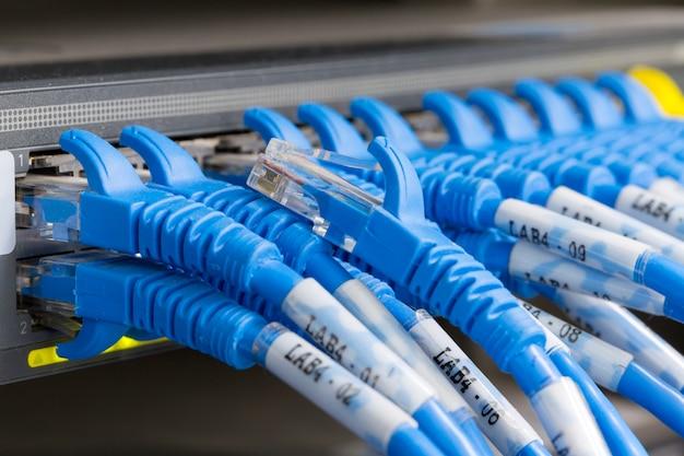 Cabo lan conectado ao switch Foto Premium